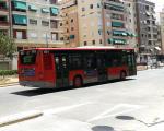Llinia d'autobus